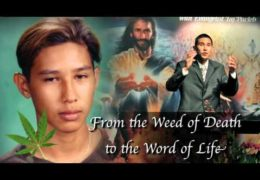 From the weed of death to the Word of Life – Taj Pacleb
